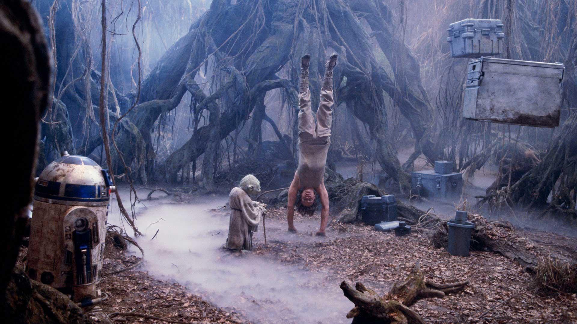 Star Wars The Last Jedi, Easter Egg, Training Montage, Luke Skywalker, Yoda