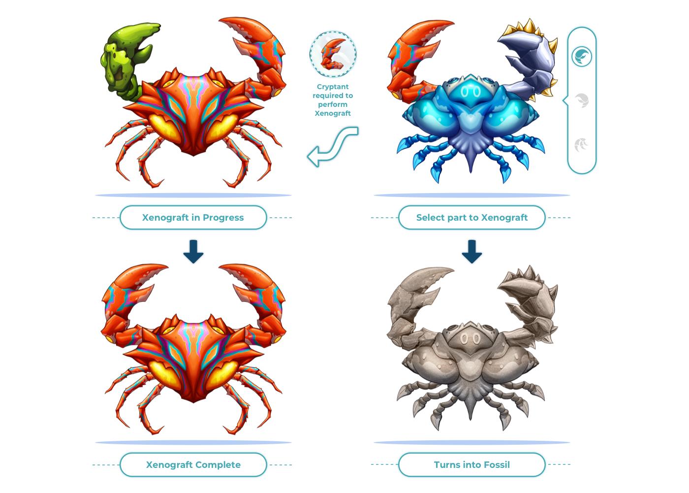 Cryptant Crab, iCandy Interactive, Blockchain Game, Cryptocurrency, Pre-Sale, Xenograft, Ethereum