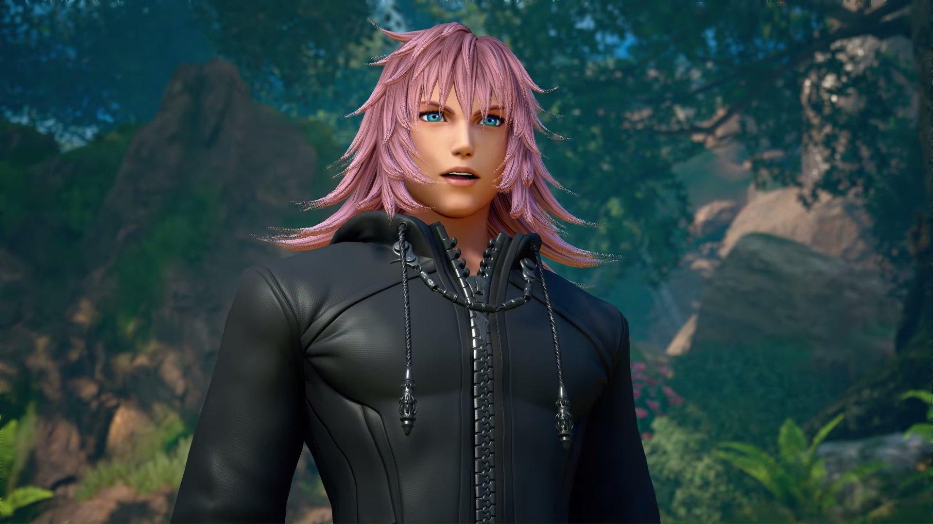 Kingdom Hearts 3, III, Square Enix, PS4, Playstation 4, Marluxia, Organization XIII, 13