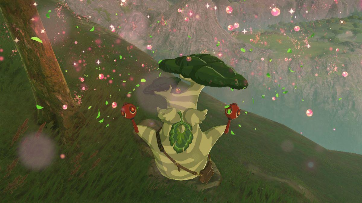 The Legend of Zelda Breath of the Wild Korok Hetsu Nintendo Switch